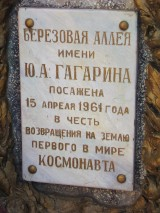 2006 (189/330)